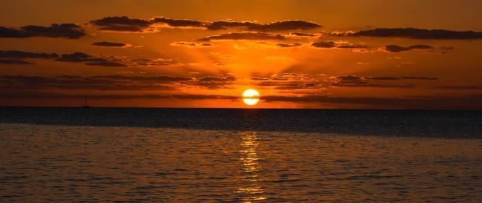 sunrise (rex).jpg