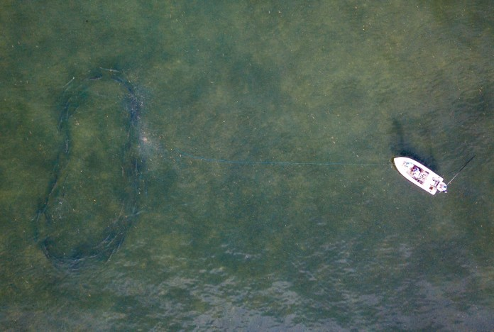 5 Tips for Landing Your First Tarpon Presented by Scientific Anglers thumbnail