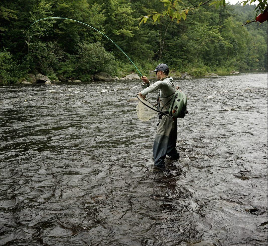 catching fish czech nymphing