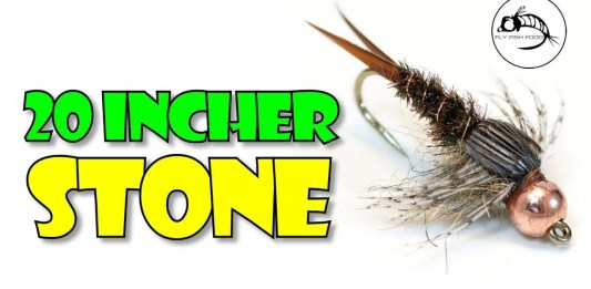 20 incher stone fly