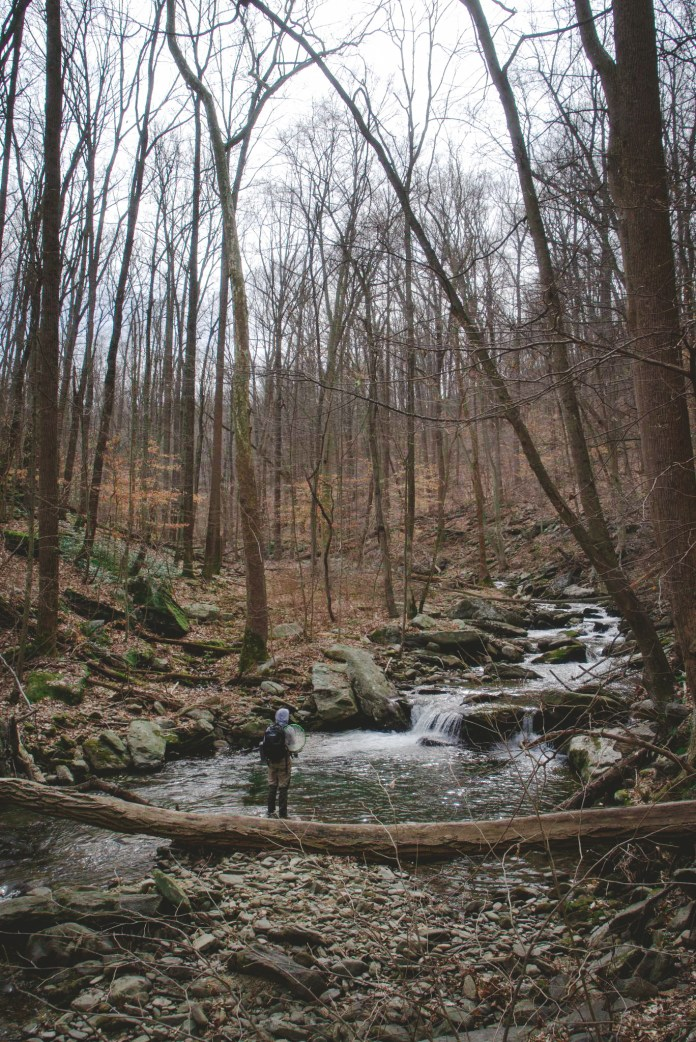 Social distancing at a local Maryland Trout stream.