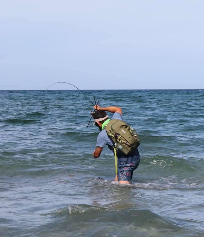Fight the beach snook