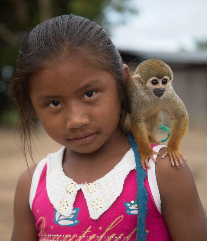 monkey on girls shoulder