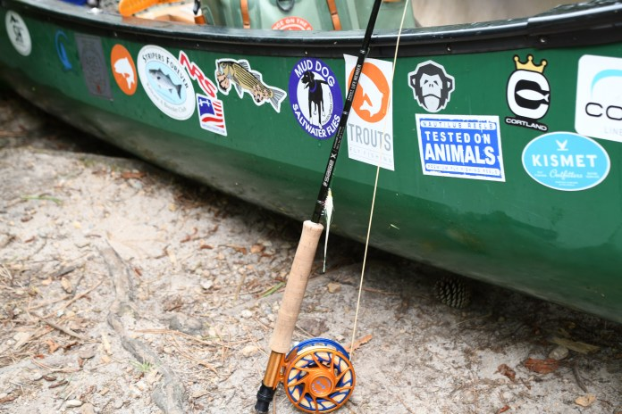 Fly Fishing for Chain Pickerel