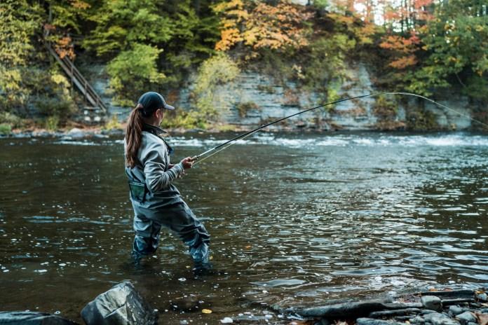 King Chinook Salmon Fight Douglaston Salmon Run