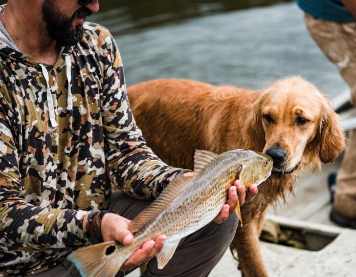 dog licking fish