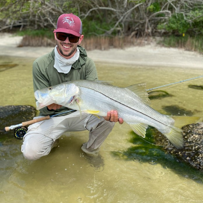 Sight Fished Snook on the Fly