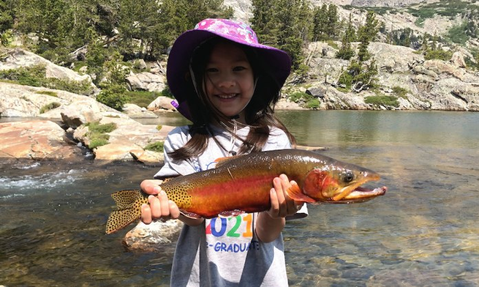 World Record Golden Trout