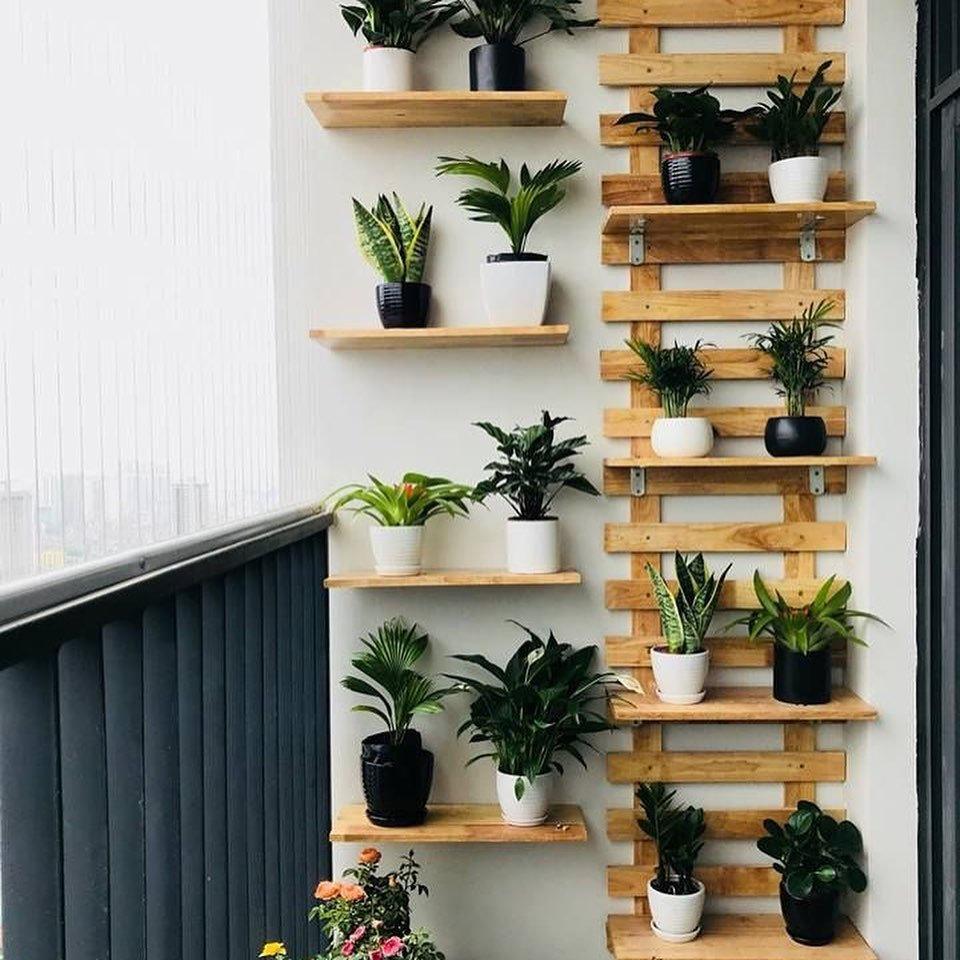 Living Room Plant Shelf Ideas Novocom Top