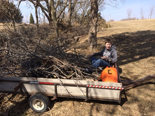 Jalen helping Dad clean up apple trees.