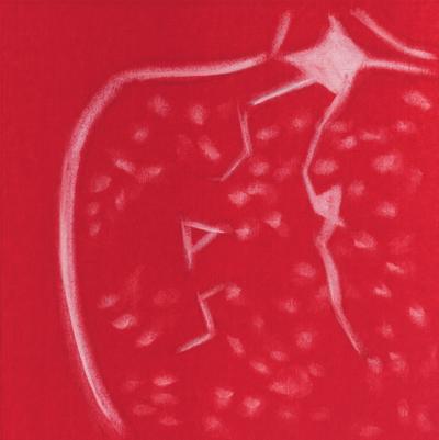 pomegranateslice