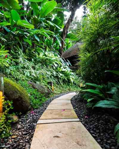 Forget Hanging Gardens, the COMO Uma Ubud is one of the best hotels in Bali. With Balinese style architecture, this luxury retreat hotel is set in a tropical jungle paradise, offering pool villas with a mountain landscape view. The perfect destination for a honeymoon, yoga or spa vacation. It's so close to the best things to do in Ubud, like the Bali Swing, Rice fields and the Monkey Forest, and offers great restaurants #ubud #bali #thingstodo #wheretostay #luxuryhotel