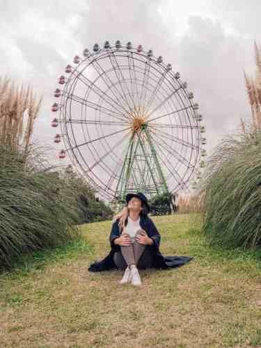 Ferris Wheel at Hitachi Seaside Park in Japan