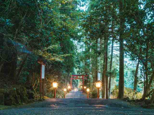 A Japanese lantern lit pathway leading down hill to the Hakone Shrine with a large orange Torii gate entrance, Japan.