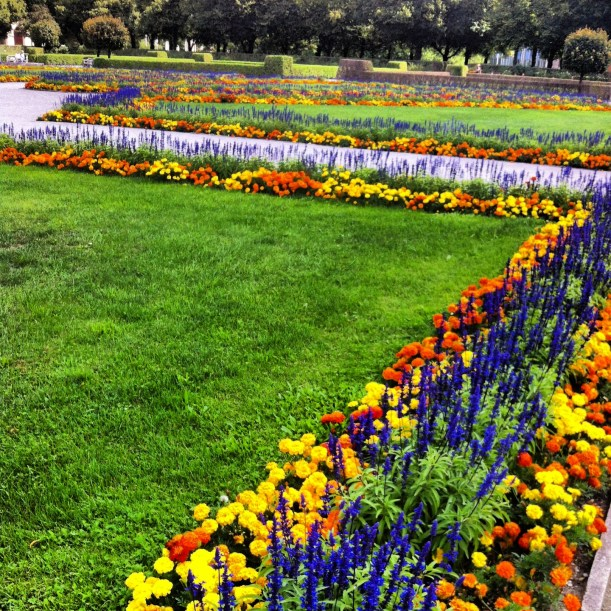 Seasonal blooms in the Hofgarten
