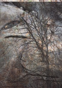 "Michelle Saffran's art, ""A Strange Massing and Curving"""