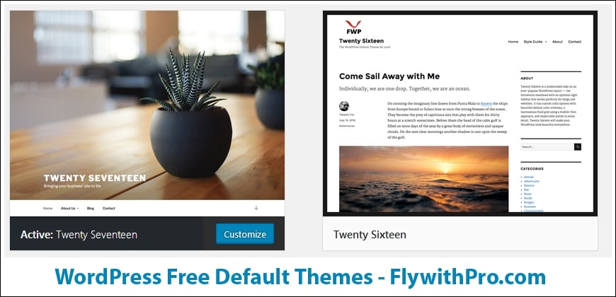 How to install Theme on WordPress Website or Blog — FlywithPro