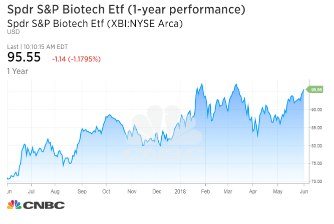 Drug stocks are underperforming 'like nothing I've ever seen' 1528121491 biotechetf