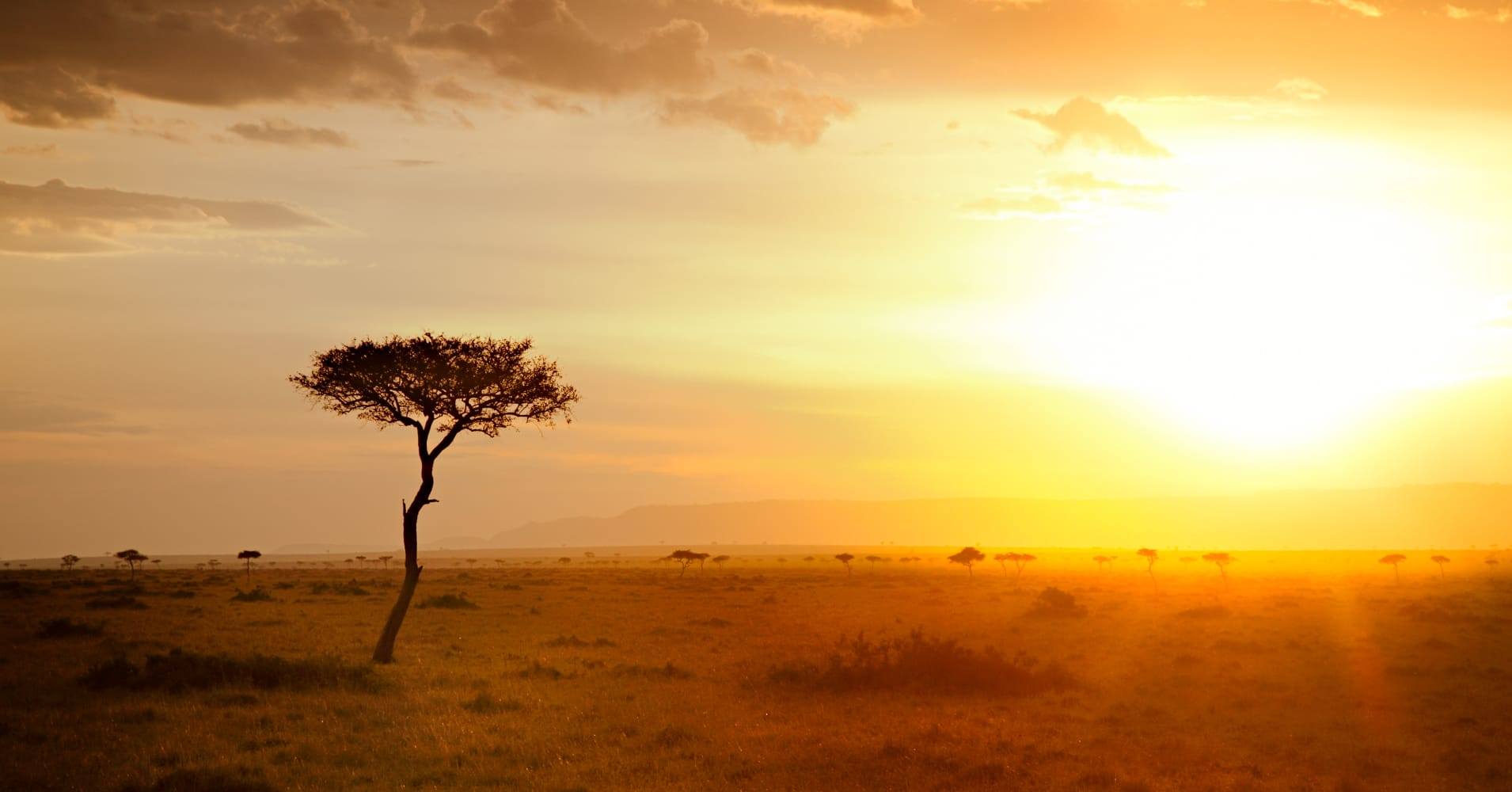 The Sun Cools Sub Saharan Africa