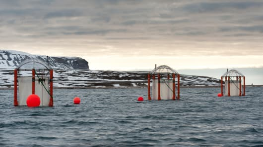 Large floating contraptions, used by scientists to predict the acidity in the oceans, sit offshore the scientific outpost of Ny-Alesund. The cold water at the poles is able to absorb more carbon dioxide than tropical waters and therefore increases acidity quicker. Though it is a relatively small amount, the effects on the ocean's chemistry can be dramatic.
