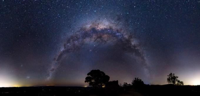 地平線に立つ一本の木と夜空に広がる天の川