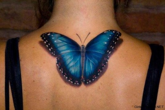 3D Blue Butterfly on the Back