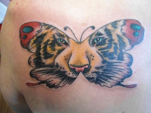 Wide Butterfly Tiger Tattoo
