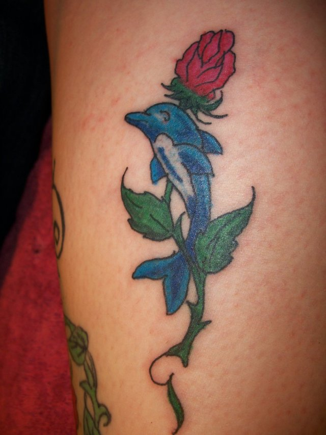 dolphin rose tattoo design