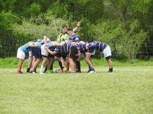 Rugby Las Flores (1)