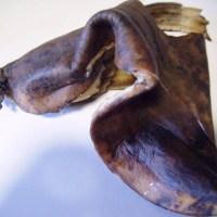 Rotten Banana Peels