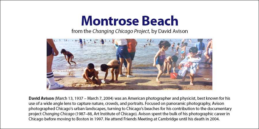 Montrose Beach Chicago, David Avison