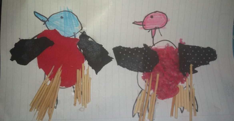 """""""Aves solidarias"""". Proyecto de extensión universitario"""