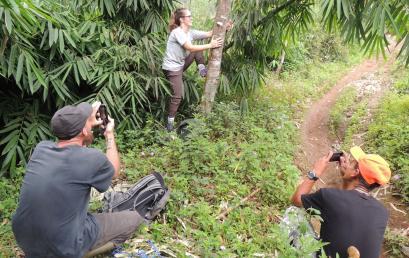 Monitoring Herpetologi di Salabintana