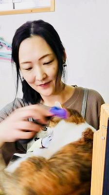 平井 都さん(保護猫カフェ ねこのおうち)