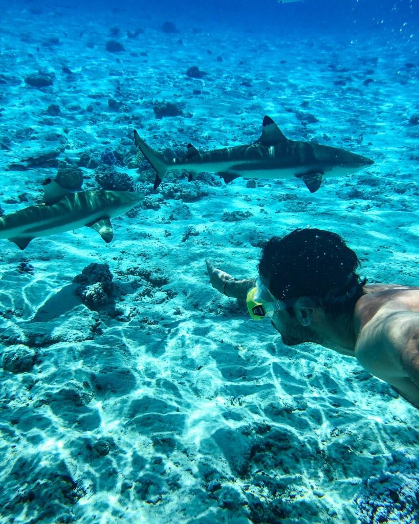Visiter Bora Bora