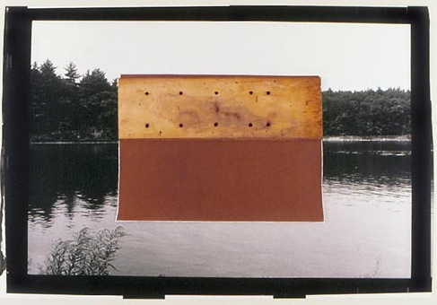 From the Walden Pond series by Bill Kane