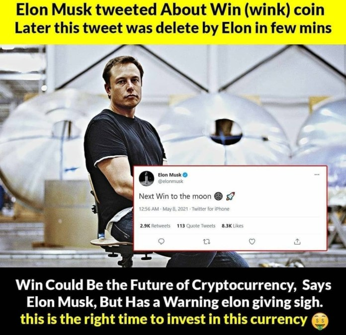 Elon musk tweet buy wink win Crypto to the moon