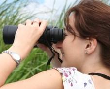 birding-binoculars-new-england-birdhouse