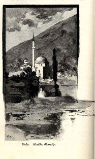 foca-1895-017