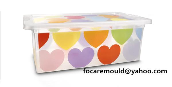 iml mold storage box