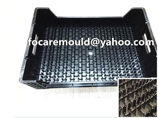 seedling box mold