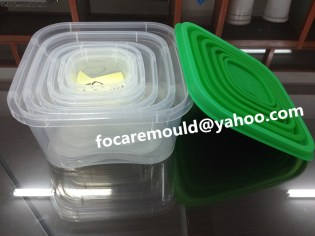 storage box mold supply