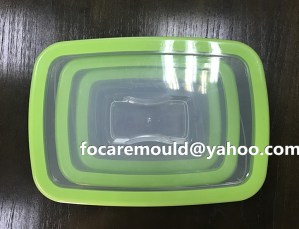 bi colors storage box mold China