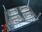 oval tub thin wall mold maker China