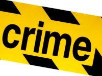 Entendiendo el Crimen en América Latina: Primeros Pasos