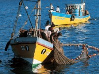 Ley de Pesca y democracia representativa