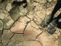 Choques climáticos y sus efectos en desarrollo de capital humano