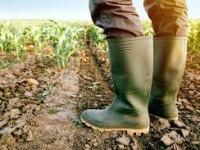 Colombia: un país rezagado en desarrollo agropecuario y en la política frente al sector