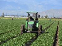 Pandemia y Empleo Rural