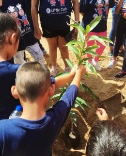 Kiwanis Universal Children Day 4
